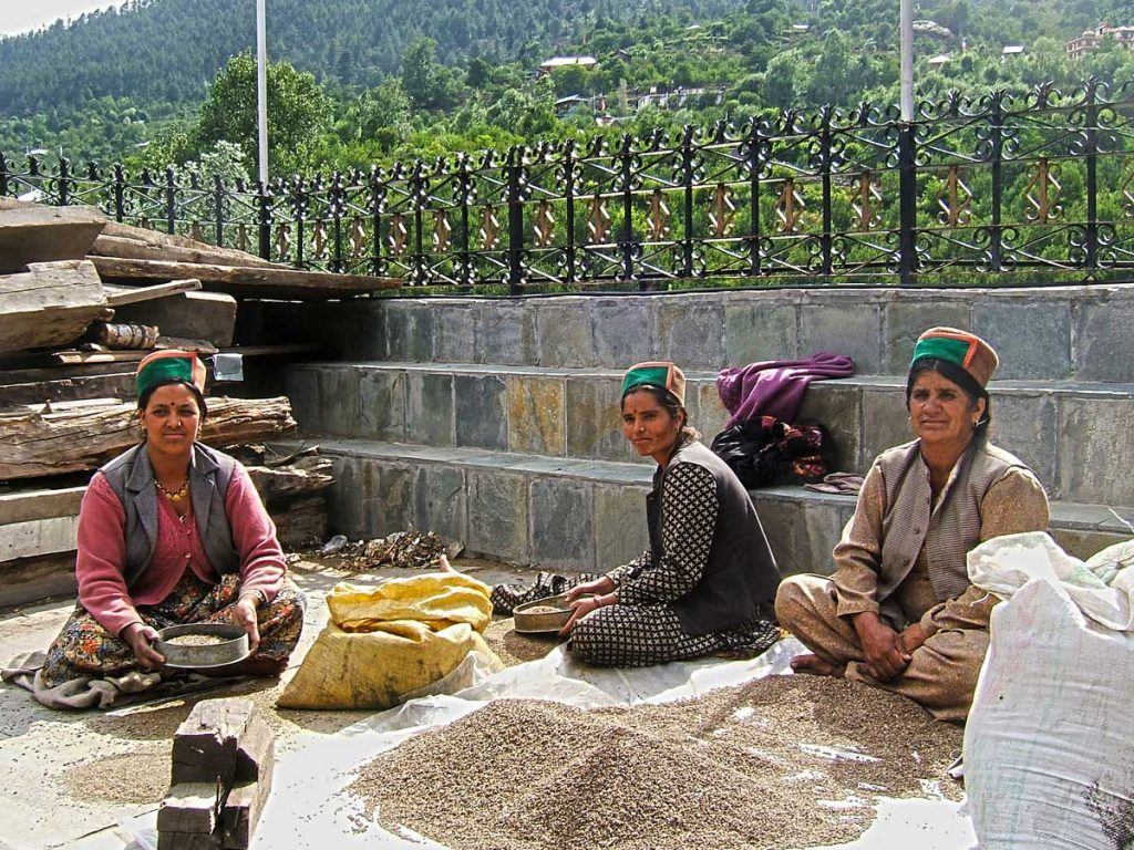 Kinnaur-women--grains